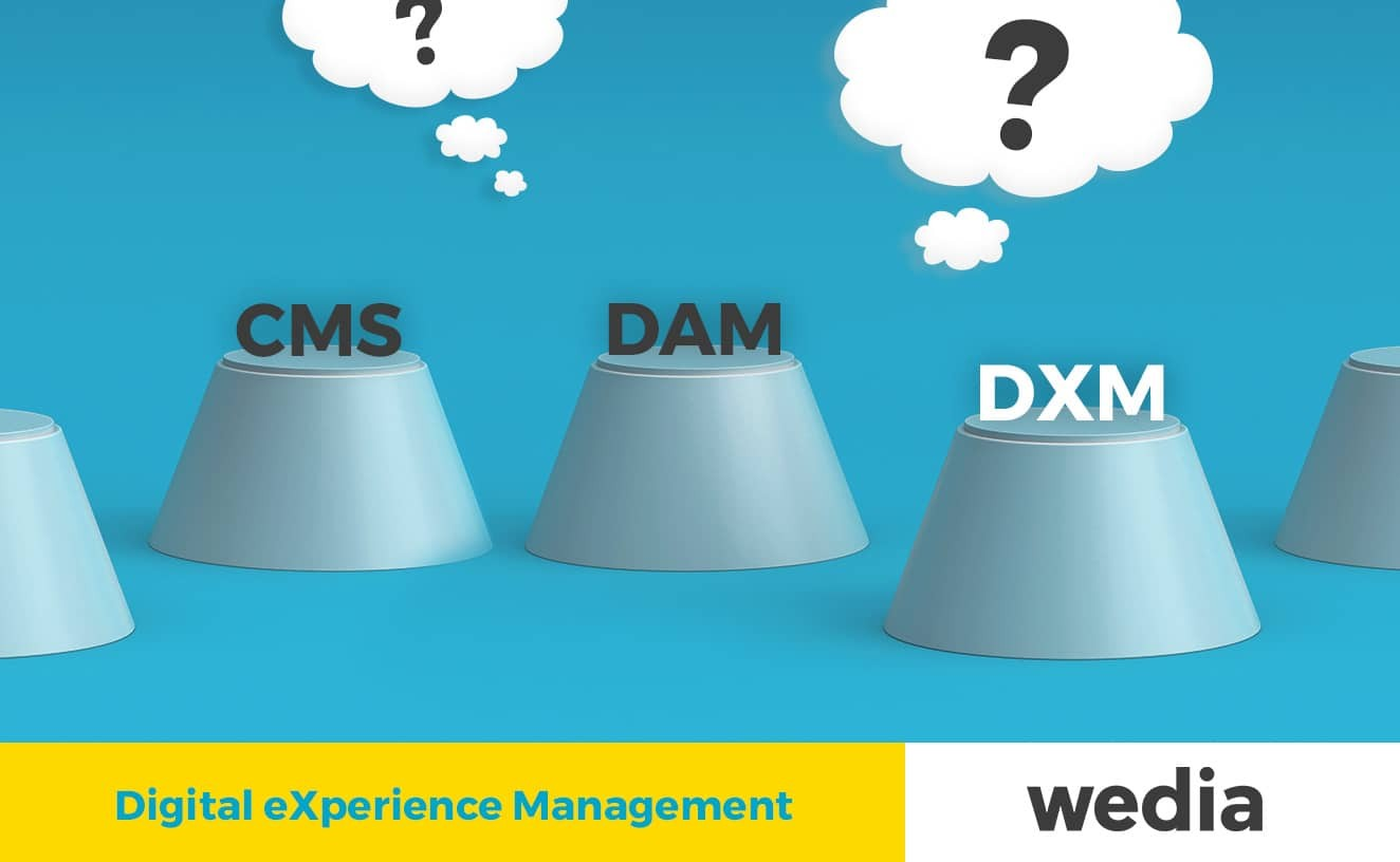 DXM DAM CMS which role does each one have