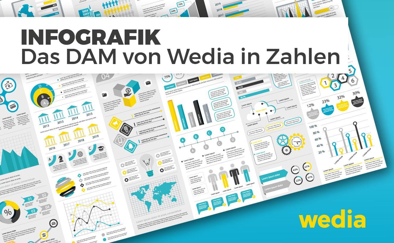 """Dieses Bild zeigt die Infografik """"Das DAM von Wedia in Zahlen"""