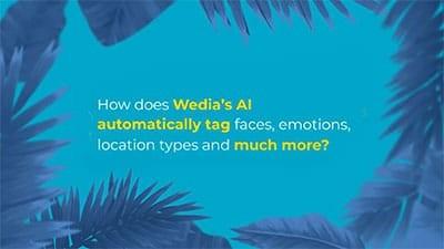 Wie Sie Ihre Medien mit den KI indexieren services des Wedia DAM einfach verschlagworten