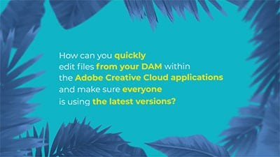Wedia Content Picker Adobe Edition