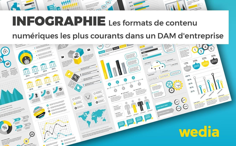 Infographie formats de contenu numérique les plus communs dans un DAM