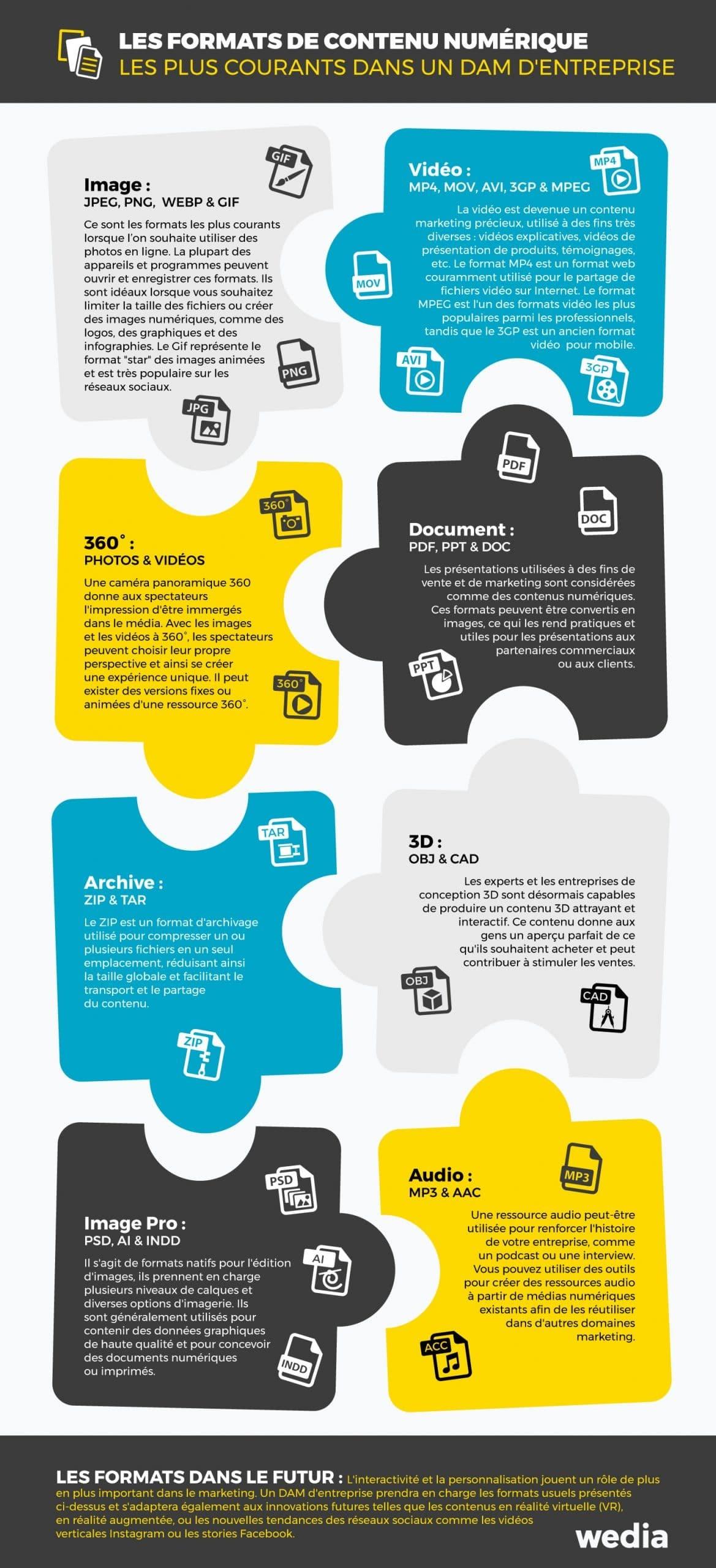 Infographie : Les formats de contenu numériques les plus courants dans un DAM d'entreprise